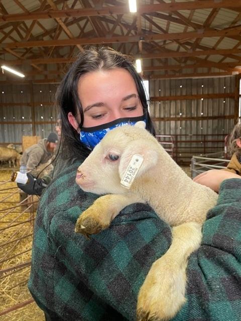 female holding lamb inside barn